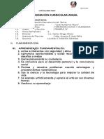 Programación Curricular Anual Civica 2015