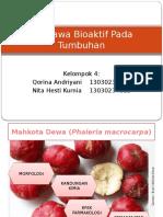 Senyawa Bioaktif Pada Tumbuhan