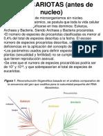 3. procariotas 2