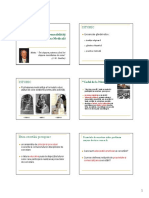 Curs 10 Principii Etice in Cercetarea Medicala 28
