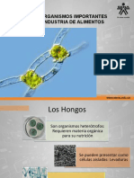 MicrobiologÃ-A de Alimentos 3