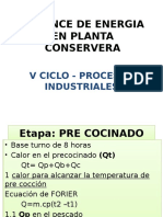 Balance de Energia en Planta Conservera