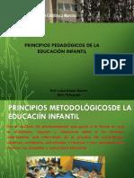 Principios Pedagicos5 PDF