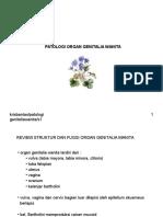 Patologi Genitalia Wanita (1)