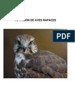 Nutrición+de+aves+rapaces.pdf
