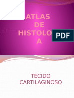 Atlas Histologia Thatiane Litenski (1)