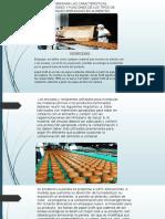 Presentació Empaque