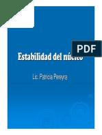 Estabilidad-del-núcleo-2013.pdf