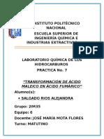 Instituto polo