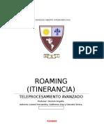 Roaming Texto