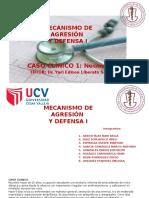 CASO CLINICO MECANISMO Y DEFENSA I GRUPO DEL DR YURI .........pptx