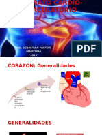 anatomia-131210194632-phpapp02