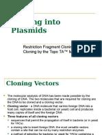 Cloning Into Plasmids -Riboprobes