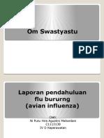 PPT FLUBURUNG