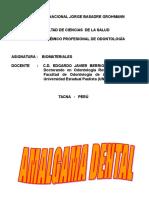 AMALGAMA -presentación