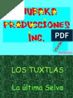 Los Tuxtlas 10811
