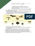 Examen de Biología 4ºESO. Tema 5