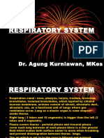 Sistema Respiratorika