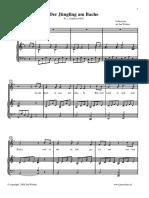 derjungl.pdf
