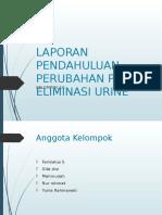 Perubahan Pola Eliminasi Urine 2