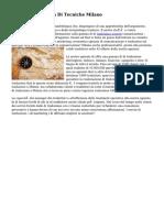 Traduzioni Agenzia Di Tecniche Milano