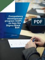 Lean Six Sigma Black Belt Certification Program