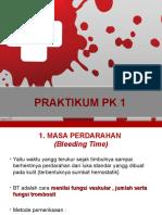Resume Praktikum Pk 1