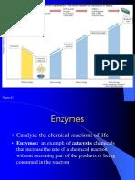 Metabolism part 1.pdf