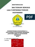 c. Xerosis, Hofmanni