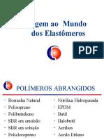 Minicurso - Formulações de Compostos de Borracha - Elastomeros Flexsys -1