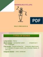 Tulang Lengkap