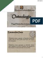 02_Osteologia