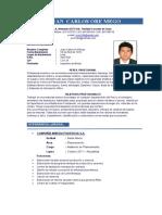 Curriculum Minas