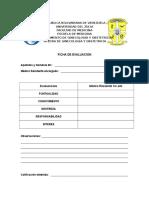 formato para evaluacion de bachiller por el residente