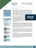 Informe_ArgentinaRegresaMercados