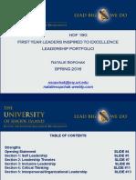 flite portfolio 2016