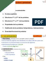 tema-5-aminoc3a1cidos-y-proteinas.pdf