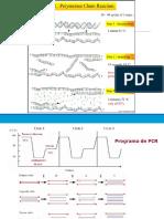 Práctica 6 Amplificación de Un Fragmento de DNA Por PCR (Sesion 1) (1)