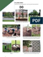 Fact Sheet 5 - Tree Do's and Don'ts ~ School Ground Greening - Maintenance