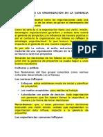 Influencia de Las Organizacion en La Gerencia de Proyectos Eugenio