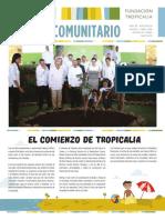 Boletín Comunitario  29
