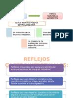 diapos de fisiologia gastrointestinal.pptx