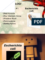 Escherichia coli pp.ppt