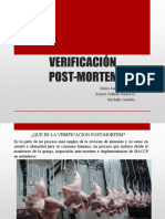 Post Mortem en aves