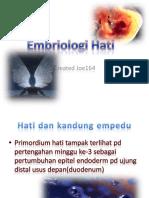 embrio hati