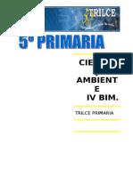 CTA. IV BIM