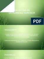TENDINOPATIAS-EESs (1)