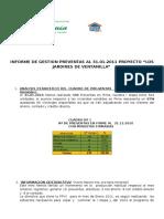 Informe Enero 2011
