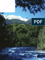 06_bosque_andino_patagonico.pdf