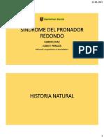 Sd Pronador Redondo